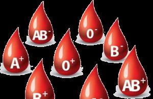 Zdrowie krew