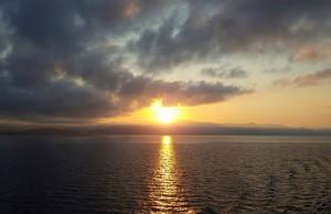cruises sun